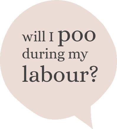 will-i-poo